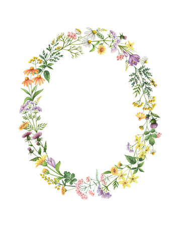 Watercolor oval wreath with meadow plants. Healing Herbs for cards, wedding invitation, posters, save the date or greeting design. Summer flowers with space for your text. Stock Photo