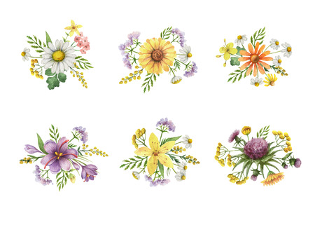 Watercolor set of bouquets with meadow plants. Unique decoration for cards, wedding invitation, posters, save the date or greeting design. Stock Photo