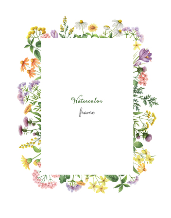 草原の植物と水彩の長方形フレーム。夏や春のカード、招待状、ポスター、バナーやデザインの挨拶のためのハーブの癒し。