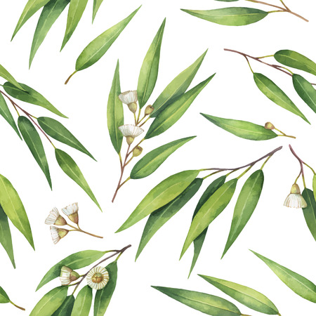 Watercolor vector seamless pattern with eucalyptus leaves and branches.