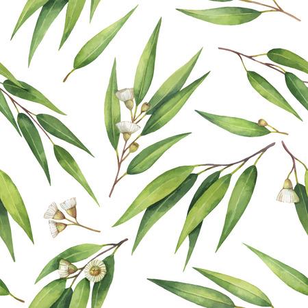Waterverf vector naadloos patroon met bladeren en takken van eucalyptus. Stock Illustratie