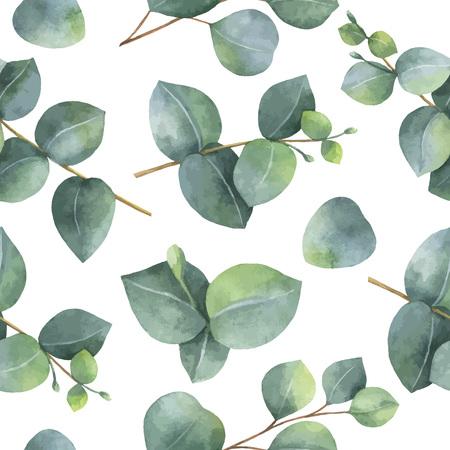 Modèle vectoriel aquarelle transparente avec des feuilles d'eucalyptus dollar en argent et des branches. Banque d'images - 69589204
