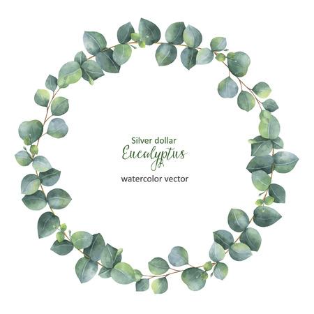 Akwarela wektor okrągły wieniec z Silver Dollar eukaliptusa. Zdjęcie Seryjne