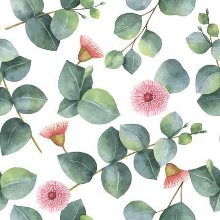 homeopathic: Watercolor vector seamless pattern with silver dollar eucalyptus leaves and branches.