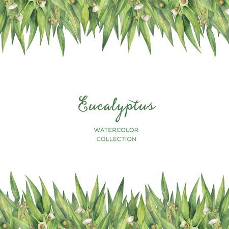 Acquerello carta floreale verde con foglie di eucalipto e rami isolato su sfondo bianco. Archivio Fotografico - 71152559
