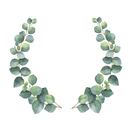 branches with leaves: Watercolor vector wreath with silver dollar eucalyptus leaves and branches.