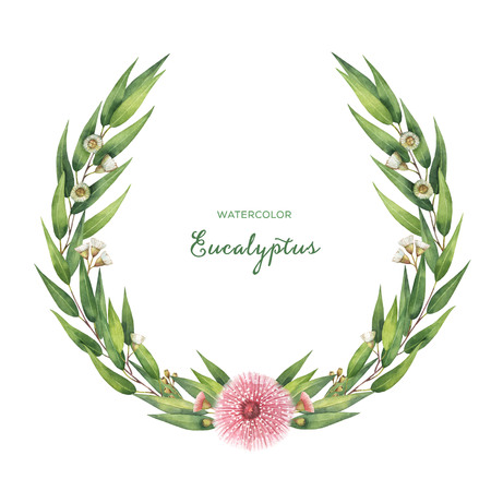 buds: Watercolor round wreath with green eucalyptus leaves and branches.