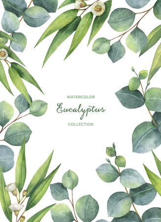 Waterverf groene bloemen kaart met eucalyptus bladeren en takken geïsoleerd op een witte achtergrond. Stockfoto - 72751865