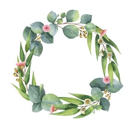 유칼립투스 나뭇잎과 나뭇 가지와 수채화 라운드 환.