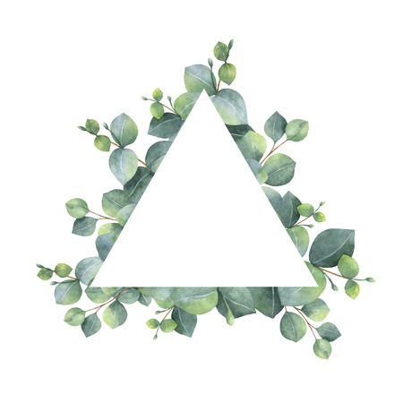 gum tree: Watercolor hand painted oval wreath with silver dollar eucalyptus.
