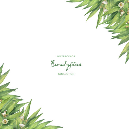 green card: Watercolor green floral card with eucalyptus leaves and branches isolated on white background. Stock Photo