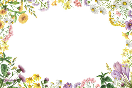 Watercolor rectangular frame with meadow plants. Stock Photo