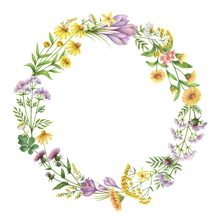 calendula: Watercolor round frame with medical plants.