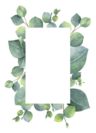 silver grass: Watercolor green floral card with silver dollar eucalyptus leaves and branches isolated on white background.