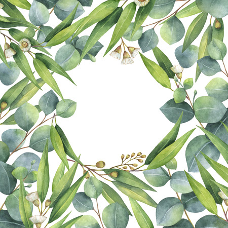 Watercolor square wreath with green eucalyptus leaves and branches.