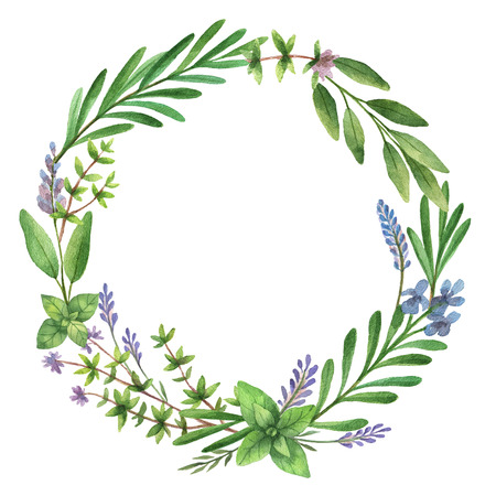 rosemary: Watercolor hand painted round frame with wild herbs and spices.
