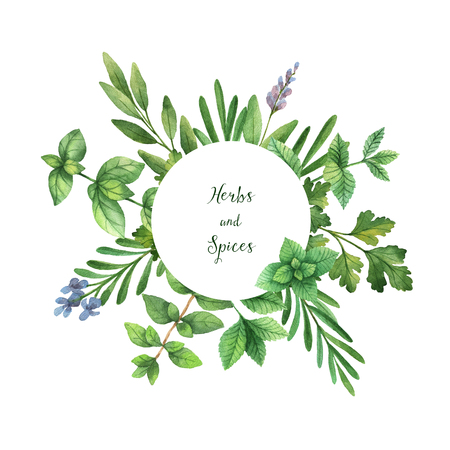 Watercolor hand painted round frame with wild herbs and spices.
