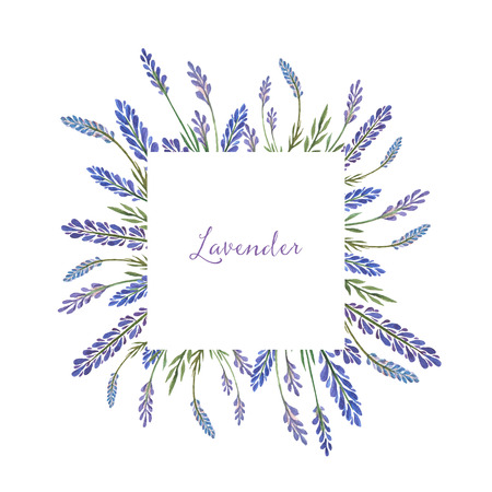 Watercolor hand painted square frame with lavender. Stock Photo