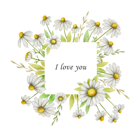 Watercolor chamomile square frame of flowers and leaves on a white background. Stock Photo
