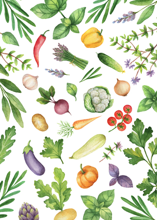 Watercolor vegetables and herbs isolated on white background. Stok Fotoğraf - 73261055
