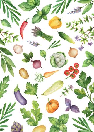 Waterverf groenten en kruiden geïsoleerd op een witte achtergrond.