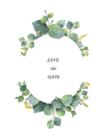 실버 달러 유 칼 리 나무 잎과 나뭇 가지와 수채화 안주.