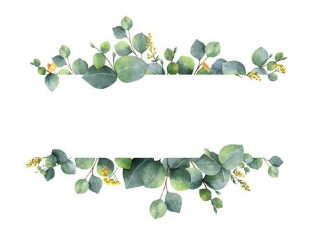 Waterverf groene bloemen banner met zilveren dollar eucalyptus bladeren en takken geïsoleerd op een witte achtergrond. Stockfoto