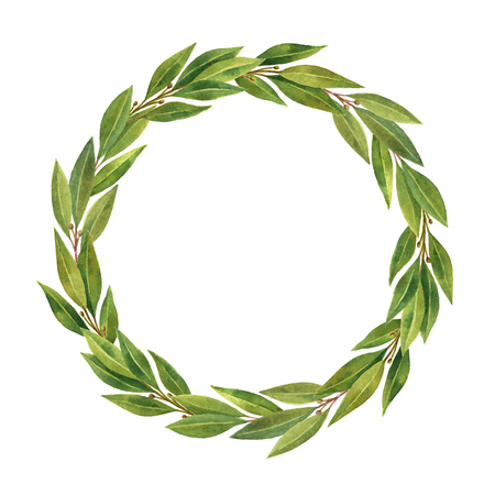 Watercolor hand drawn circle frame Bay leaf isolated on white background. Banco de Imagens