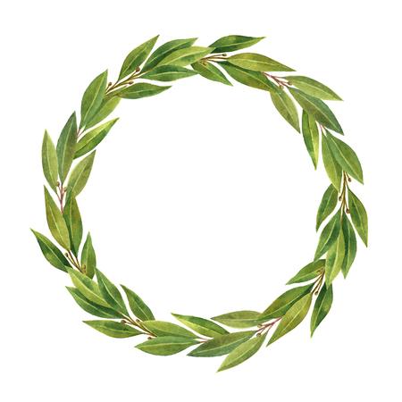Waterverf hand getekende cirkel frame Bay blad geïsoleerd op een witte achtergrond. Stockfoto
