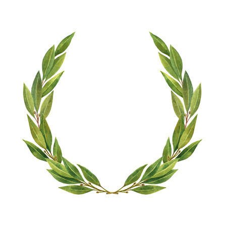 Watercolor Bay leaf wreath isolated on white background. Foto de archivo
