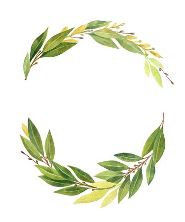 수채화 베이 잎 화환은 흰색 배경에 고립. 스톡 콘텐츠