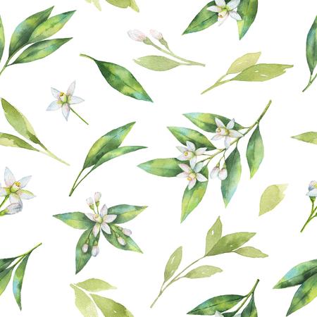 水彩果物オレンジ花や葉は、白い背景で隔離のシームレスなパターン。 写真素材