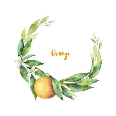citrus tree: Watercolor hand drawn wreath fruit orange branch.