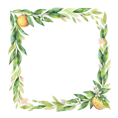 Watercolor square frame fruit orange branch isolated on white background.