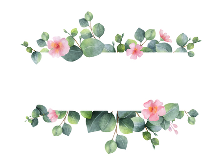 Watercolor green floral banner with silver dollar eucalyptus leaves and branches isolated on white background. Archivio Fotografico