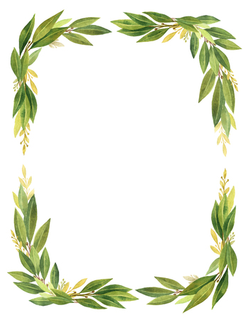 rectangular: Watercolor Bay leaf wreath isolated on white background. Stock Photo