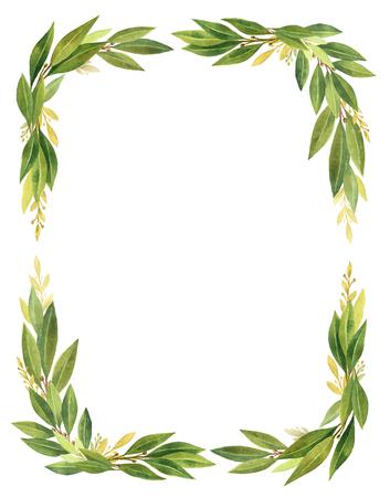 Waterverf Bay leaf krans geïsoleerd op een witte achtergrond. Stockfoto - 76559375