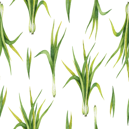 Hand drawn watercolor seamless pattern of Lemon grass. Stock Photo