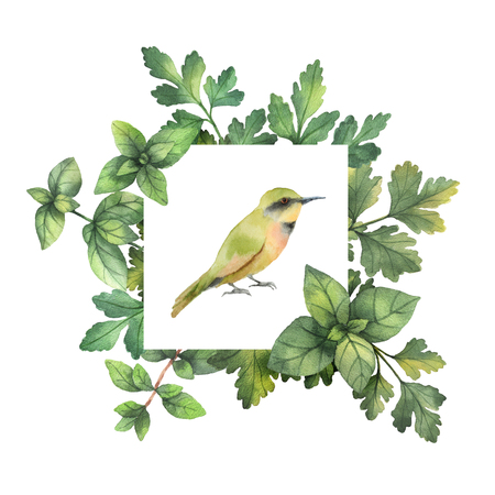 Watercolor hand painted square frame with herbs, spices and bird. Banco de Imagens