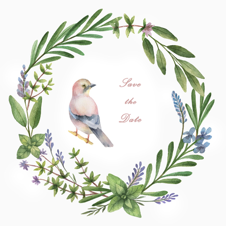 Watercolor hand painted circle frame with herbs, spices and bird. The perfect design for greeting card, beauty store, cosmetics, natural and organic products. Background with space for text.