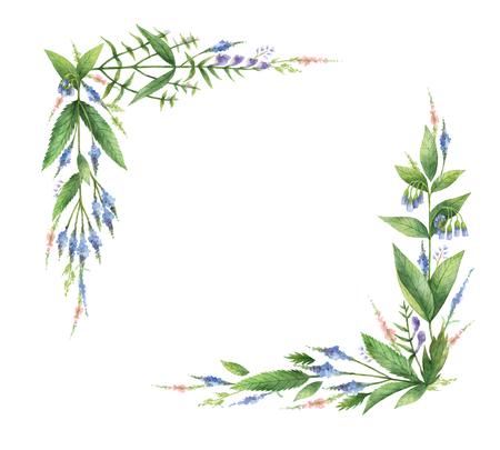 水彩の手描きのハーブとスパイスを長方形の花輪。 写真素材