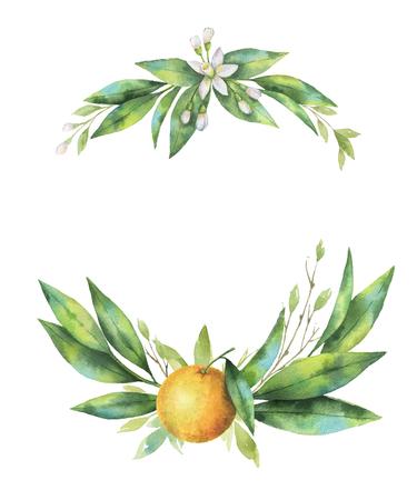 수채화 손으로 그려진 된 화 환 과일 오렌지 지점.