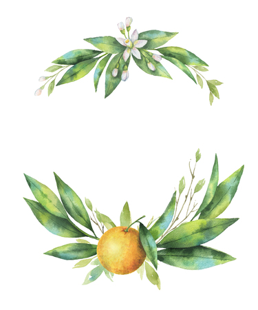 Watercolor hand drawn wreath fruit orange branch.