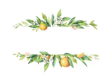 Waterverf banner fruit oranje tak geïsoleerd op een witte achtergrond. Stockfoto - 78098810