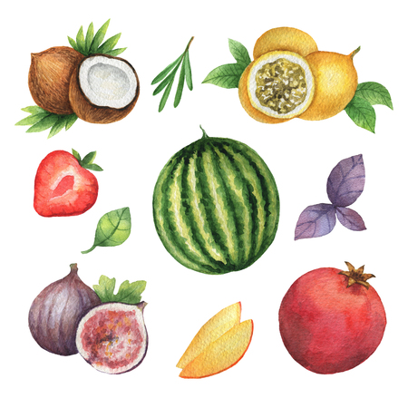 passion ecology: Watercolor organic set of fruits and herbs isolated on white background. Stock Photo