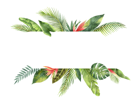 Watercolor banner tropical leaves and branches isolated on white background. Фото со стока - 79324913