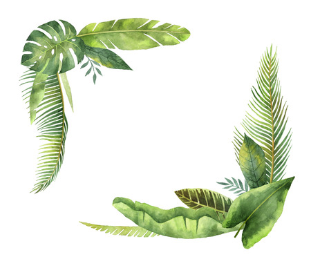 Watercolor wreaths tropical leaves and branches isolated on white background.