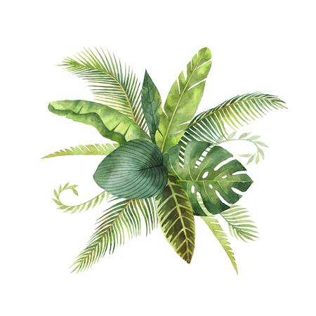 水彩花束熱帯の葉し、枝が白い背景に分離します。