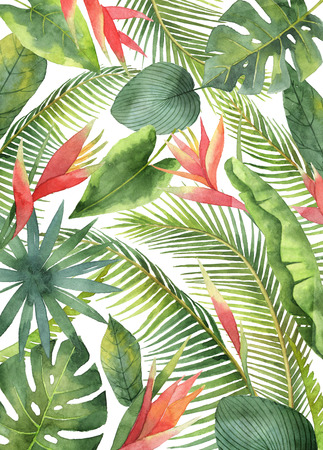 Watercolor card with tropical flowers and leaves isolated on white background.