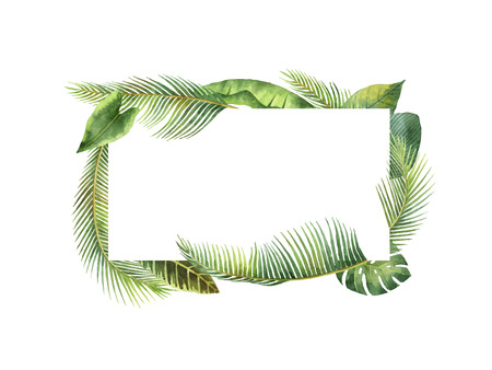 Watercolor rectangular frame tropical leaves and branches isolated on white background. Stock Photo
